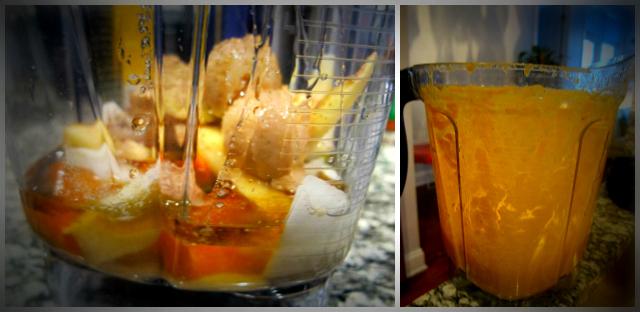 lomoCarrot Ginger Dressing Blender