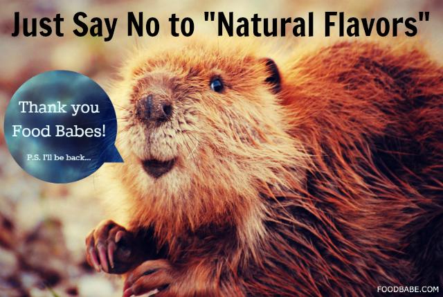 Beaver Anal Glands