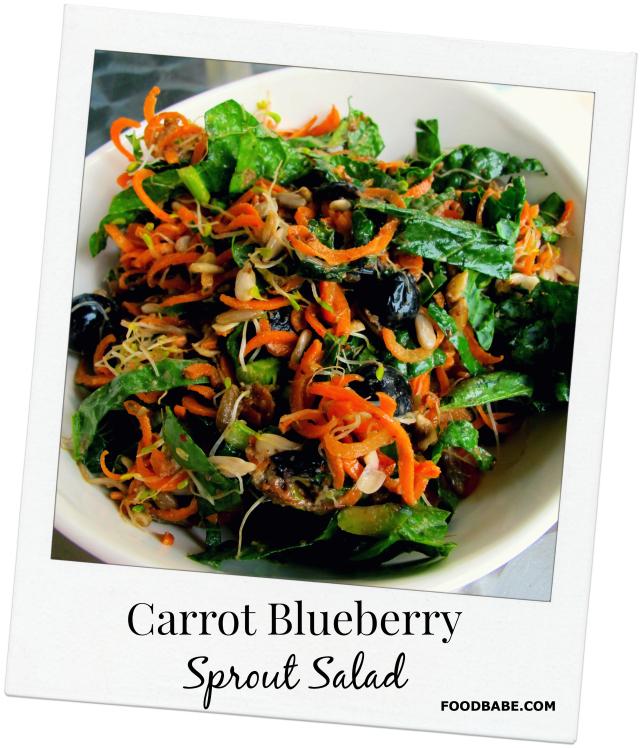 CarrotBlueberrySalad
