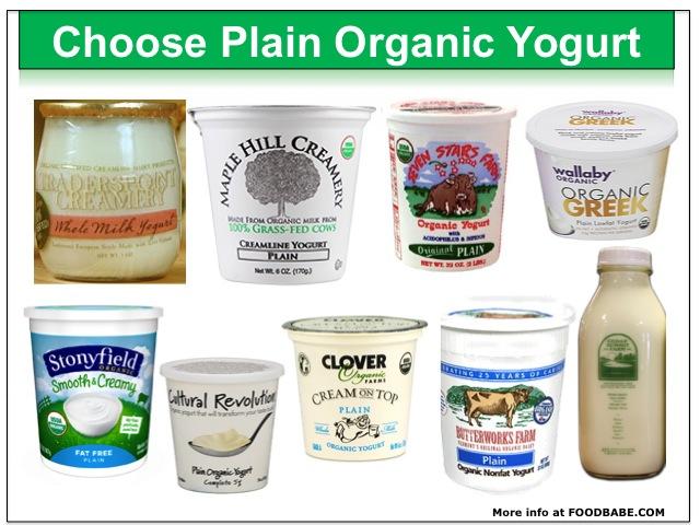 Plain Organic Yogurt
