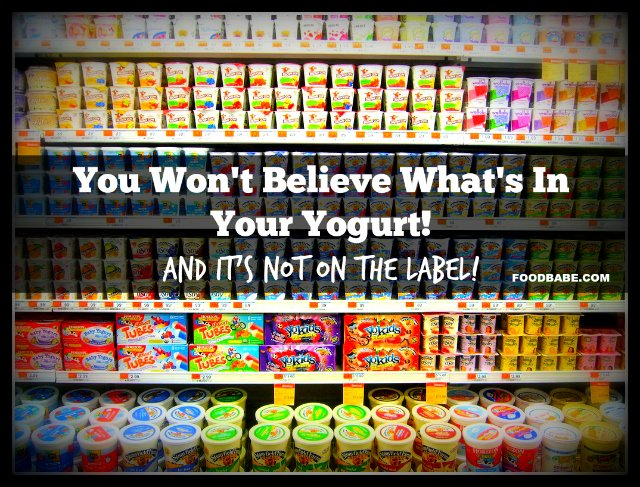 You Won't Believe What's In Your Yogurt - And It's Not On The Label!