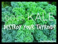Does Kale Destroy Your Thyroid?