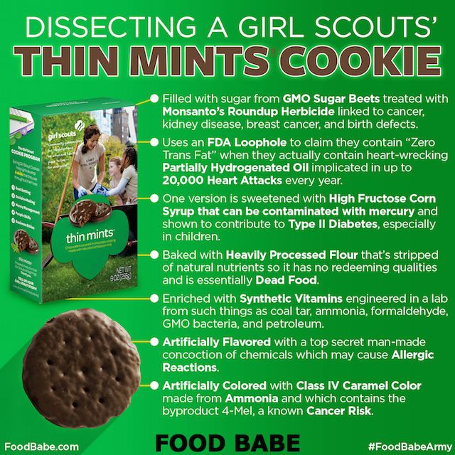Dissecting a Girl Scouts Thin Mints Cookie