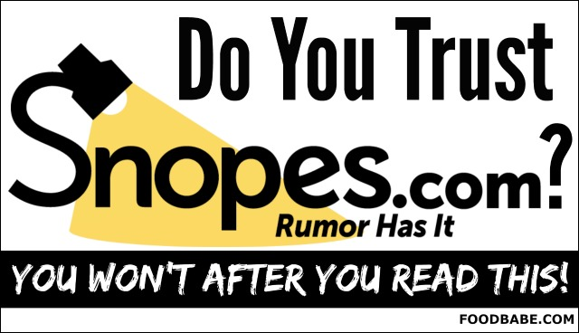 can-you-trust-snopes